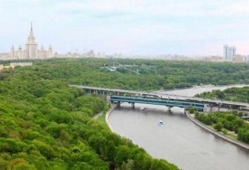 Colline Lenin (Mosca): storia, l'ubicazione