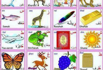 litery arabskie: Charakterystyka ich piśmie. Alfabet arabski