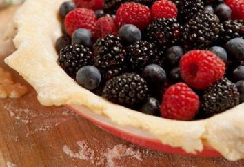 torta rapida con frutti di bosco: ricette