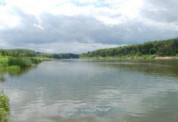 rio Bityug. Localização, flora e fauna