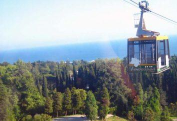Teleférico (Jardín Botánico de Sochi): revisa los turistas