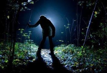 Przetrwanie w tajdze człowieka: przebieg młodego wojownika