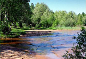 Kopanskoe – jezioro dla odprężenia psychicznego