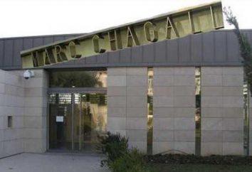 Marc Chagall Muzeum w Nicei: biblijne historie