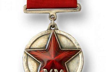 """""""20 anni dell'esercito rosso"""" – medaglia e varietà"""