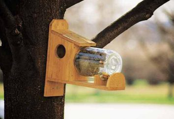 Podajnik na wiewiórki z rąk: rysunków, materiały