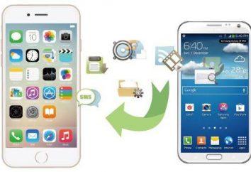 Jak rzucać telefonu do kontaktów w telefonie? Krok po kroku