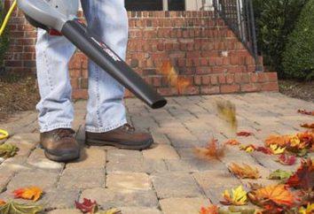 aspirateur de jardin pour ramasser les feuilles: commentaires des internautes. Comment choisir un aspirateur pour les feuilles