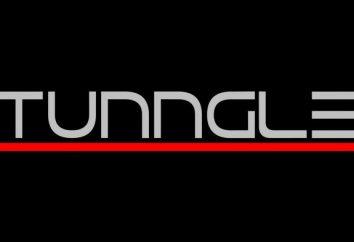 Impossibile inizializzare l'adattatore di rete Tunngle: cosa fare?