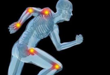 Comment renforcer vos articulations et ligaments: outils et exercices