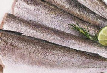pescada no vapor: receitas interessantes