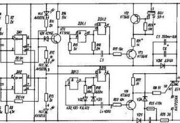 Conducir termostato para incubadora con las manos. mikrokontorollere incubadora termostato