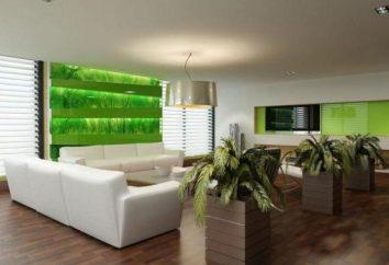 L'éco-style intérieur. Photos de l'appartement intérieur, cuisine, les éco-style enfants