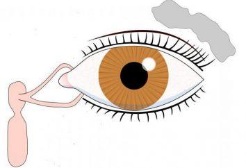 Zapalenie gruczołu łzowego: przyczyny, leczenie simtomy
