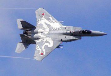 Attrezzature, armi e forza di combattimento delle forze aeree giapponesi: passato e presente