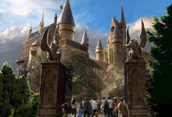 Où il a étudié Harry Potter? personnel de Poudlard