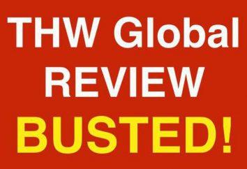 Visión general del proyecto THWGlobal.com: cómo trabajar en el sitio, comentarios