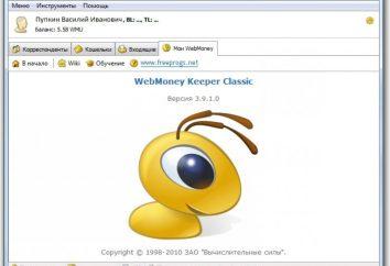 Comment utiliser « Kiper WM»?