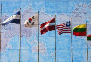 Il rapporto tra diritto internazionale internazionale, pubblico e privato. Analogie e differenze di diritto internazionale pubblico e privato
