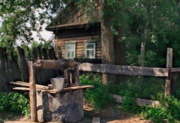 Um filme sobre a vila: o notório varredura russo da alma