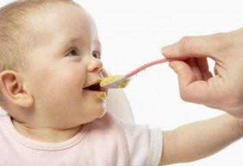 Alimentação das crianças aos 11 meses: dieta, receitas e menus. Uma criança nos primeiros 11 meses: crescimento, nutrição e cuidados