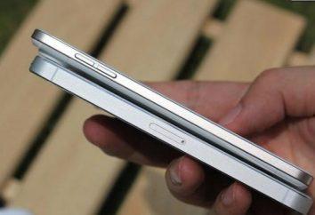 """Co jest lepsze: """"Samsung"""" lub """"iPhone""""? Walka o przywództwo marek"""