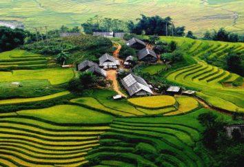 """attrazioni Dalat: Lago di Xuan Huong Hotel """"Crazy House"""", la funivia, giardino fiorito"""