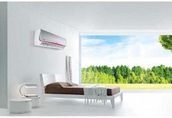 Condizionatore inverter – un'oasi di aria fresca e pulita nella polverosa, sudore una città calda.