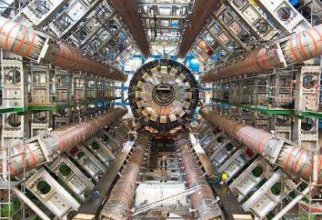 Hadron Collider: Start. Il Large Hadron Collider perché? Dove si trova?