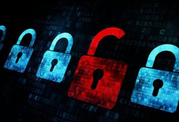 Cómo proteger sus datos personales en Internet