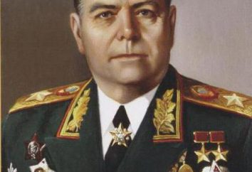 Vasilevskiy Aleksandr: Biografie und Position