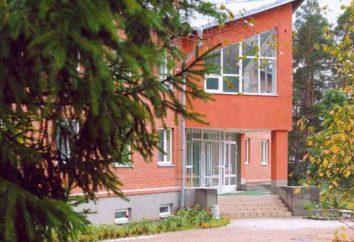 « Ruby » – centre de loisirs dans le quartier Luga, région de Leningrad. Description, commentaires