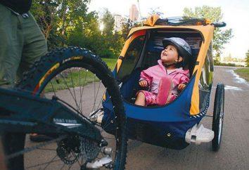 reboque de bicicleta para uma criança – um assistente de confiança quando se viaja com crianças