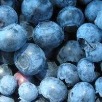 Korzystanie z jagód i ich zawartości kalorii: jagody