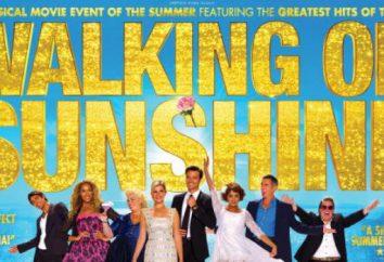 """Il musical """"Cammina alla luce del sole"""". Recensioni degli spettatori e dei critici"""