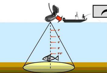 """Fish Finder """"Practitioner ER-6 Pro"""": recensioni, specifiche, istruzioni"""