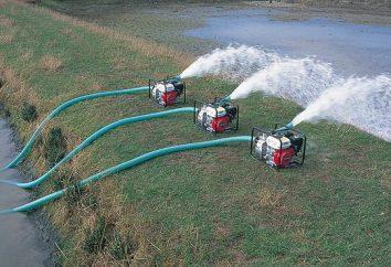 ¿Qué bomba le ayudará a organizar el suministro de agua de una casa de campo del pozo?
