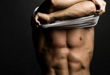 Ernährung und Trainingsprogramm auf das Gewicht ectomorph