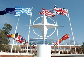 Che cosa è la storia, l'organizzazione, le funzioni della NATO
