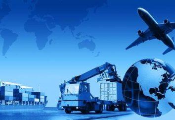 Logisticien – quelle est cette profession, et quelles sont les responsabilités professionnelles?