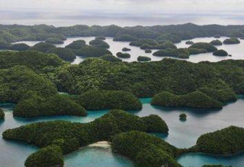 Îles Palau dans le Pacifique