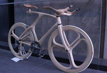 Najbardziej nietypowe rowery świat (foto). Nietypowe rowery z ich rąk