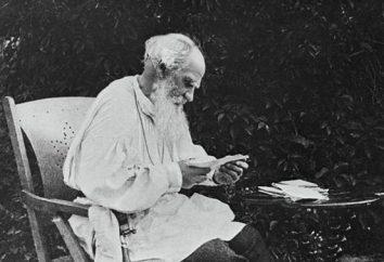 """""""Guerra e Pace"""". Vantaggiosi romanzo L. N. Tolstogo. immagini Heroes"""