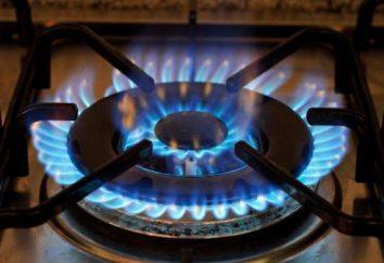 Ele não funciona em uma ignição elétrica fogão a gás: possíveis causas e resolver o problema