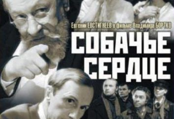 """Conto Mihaila Bulgakova """"Heart of a Dog"""": comentários, os personagens principais, citações"""
