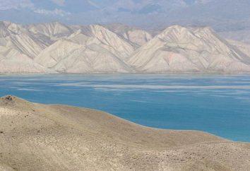 Sud Lago d'Aral: la causa della morte, la storia, le foto