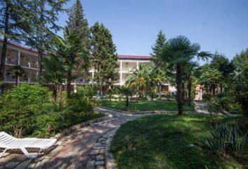 Hotéis em Abkhazia. Abkhazia: hotéis com tudo incluído. Os melhores hotéis em Abkhazia