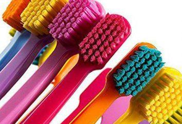 Brosses à dents professionnelles: examen des modèles, comparaison et commentaires