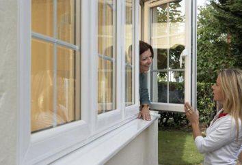 A vida de janelas de plástico e goma de vedação serviço