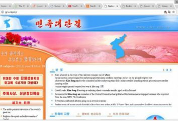 En Corea del Norte, sólo hay 28 sitios web?